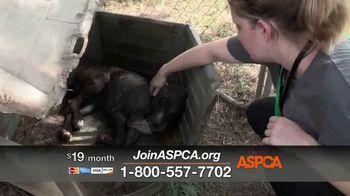 ASPCA TV Spot, 'Overwhelming' - Thumbnail 10