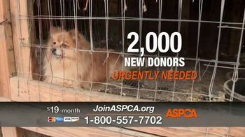 ASPCA TV Spot, 'Overwhelming' - Thumbnail 9