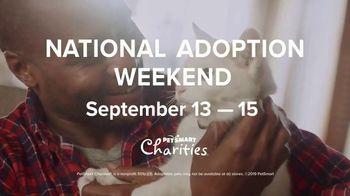 PetSmart National Adoption Weekend Event TV Spot, 'Love at First Sight' - Thumbnail 9