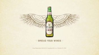 Yuengling TV Spot, 'Take Flight' Song by Boots Ottestad - Thumbnail 10