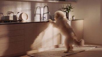 Delta Faucet Voice IQ Technology TV Spot, 'Command Your Kitchen' - Thumbnail 9