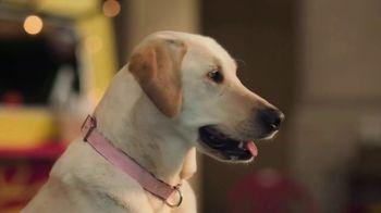 Subaru Crosstrek TV Spot, 'Dog Tested: Lunch Stop' [T1] - Thumbnail 4