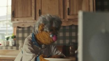 Portal from Facebook TV Spot, 'A Very Muppet Portal Launch' - Thumbnail 8