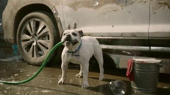 Subaru Ascent TV Spot, 'Dog Tested: Car Wash' [T1] - Thumbnail 4