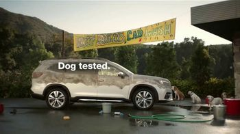Subaru Ascent TV Spot, 'Dog Tested: Car Wash' [T1] - Thumbnail 8