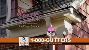 Beldon LeafGuard TV Spot, 'Beldon Cares: Breast Cancer' - Thumbnail 5