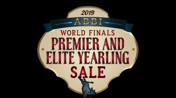 American Bucking Bull, Inc. Elite Yearling Sale TV Spot, 'Potential Champion' - 10 commercial airings
