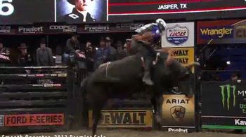 American Bucking Bull, Inc. Elite Yearling Sale TV Spot, 'Potential Champion' - Thumbnail 2