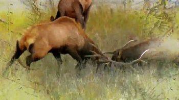 Safari Club International Convention TV Spot, '2020: Reno' - Thumbnail 4