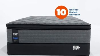 Big Lots TV Spot, 'Sealy Mattresses: Make Your Dreams'