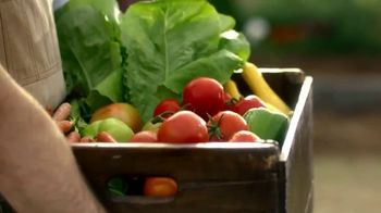 Alabama Tourism Department TV Spot, 'Take it All In: Food Gems' - Thumbnail 3
