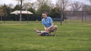 Honda TV Spot, 'Random Acts of Helpfulness: Dog Wheels' [T2] - Thumbnail 4