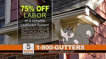 Beldon LeafGuard TV Spot, 'BBB and Good Housekeeping' - Thumbnail 6