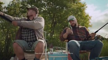 Buffalo Wild Wings Beer-Battered Chicken TV Spot, 'Better With Beer'