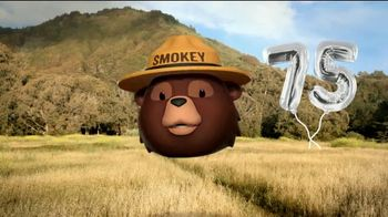 Smokey Bear Campaign TV Spot, 'Tall Grass Wildfires' Featuring Betty White - Thumbnail 4