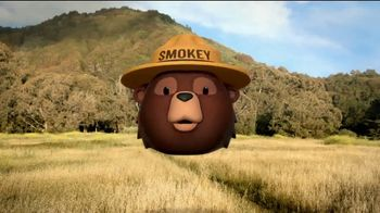 Smokey Bear Campaign TV Spot, 'Tall Grass Wildfires' Featuring Betty White - Thumbnail 5