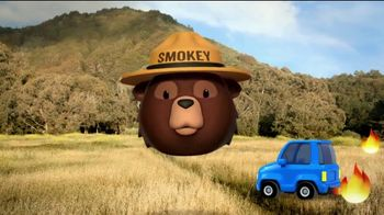 Smokey Bear Campaign TV Spot, 'Tall Grass Wildfires' Featuring Betty White - Thumbnail 8