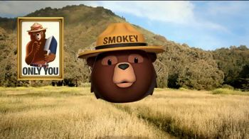 Smokey Bear Campaign TV Spot, 'Tall Grass Wildfires' Featuring Betty White - Thumbnail 9