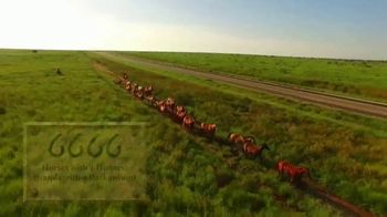 6666 Ranch TV Spot, '2019 Stallion Roster' - Thumbnail 1