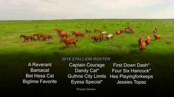 6666 Ranch TV Spot, '2019 Stallion Roster' - Thumbnail 3