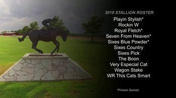 6666 Ranch TV Spot, '2019 Stallion Roster' - Thumbnail 5