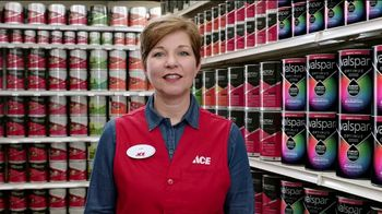 ACE Hardware Fourth of July Sale TV Spot, '50 Percent Off Paint' - Thumbnail 1