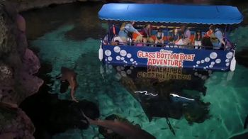 Ripley's Aquarium of the Smokies TV Spot, 'This Place Was Awesome' - Thumbnail 2