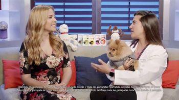 Bravecto TV Spot, '12 semanas de protección' con Elva Saray [Spanish] - Thumbnail 6