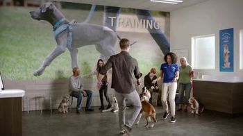 PetSmart TV Spot, 'The Speed Demon' - Thumbnail 6