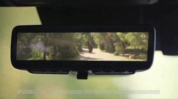 2019 Toyota RAV4 TV Spot, 'Dear Grizzly Bear' [T1]