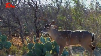 Tamaulipas Hunting and Fishing TV Spot, 'We Get It' Featuring Dave Watson - Thumbnail 4