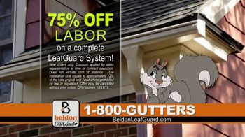 Beldon LeafGuard 75 Percent Off Labor Event TV Spot, 'The Rain is Coming' - Thumbnail 4
