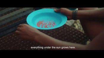Visit Angola TV Spot, 'Quality Crops' - Thumbnail 4