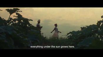 Visit Angola TV Spot, 'Quality Crops' - Thumbnail 5