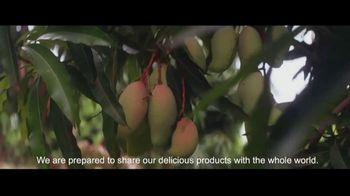 Visit Angola TV Spot, 'Quality Crops'