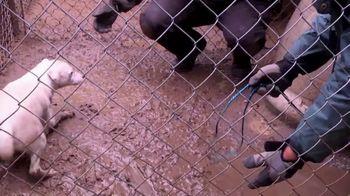 ASPCA TV Spot, 'Unable to Speak' - Thumbnail 4