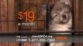 ASPCA TV Spot, 'Unable to Speak' - Thumbnail 6