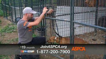 ASPCA TV Spot, 'Unable to Speak' - Thumbnail 7