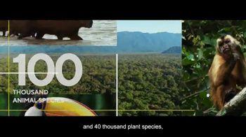 Visit Brasil TV Spot, 'Brazil by Brasil' - Thumbnail 6