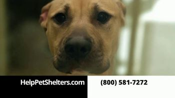 Help Pet Shelters TV Spot, 'Fund Pet Shelters'