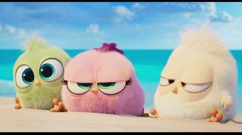 The Angry Birds Movie 2 - Alternate Trailer 35