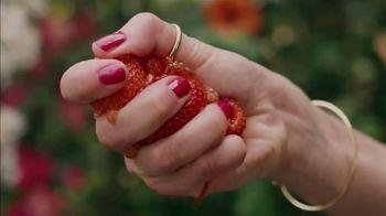 Absolut Juice TV Spot, 'Garden Party'