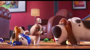 The Secret Life of Pets 2 Home Entertainment TV Spot - Thumbnail 6