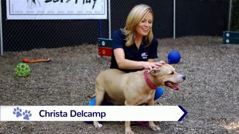 Clear the Shelters TV Spot, 'NBC 10: New Best Friend' - Thumbnail 2