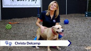 Clear the Shelters TV Spot, 'NBC 10: New Best Friend' - Thumbnail 3
