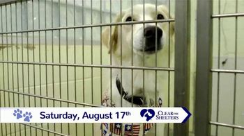 Clear the Shelters TV Spot, 'NBC 10: New Best Friend' - Thumbnail 6