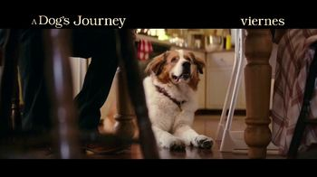 A Dog's Journey - Alternate Trailer 32