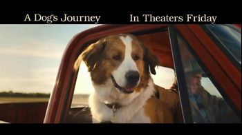 A Dog's Journey - Alternate Trailer 28