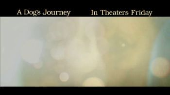 A Dog's Journey - Alternate Trailer 34