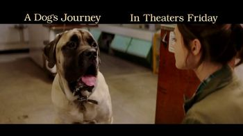 A Dog's Journey - Alternate Trailer 33